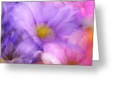 Wild Crazy Daisy Abstract Greeting Card