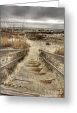 Wild Dunes Beach South Carolina Greeting Card by Dustin K Ryan