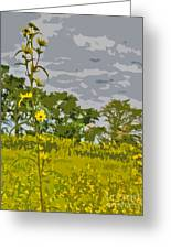 Wild Flower Field Abstract Greeting Card
