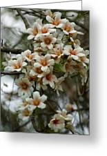 Wild Flowering Beauty Greeting Card
