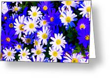 Wild Flowers 3 Greeting Card