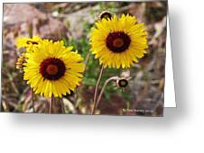 Wild Flowers Above The Rim Greeting Card
