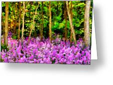 Wild Forest Violets Greeting Card