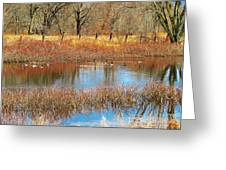 Wild Geese On The Farm Greeting Card