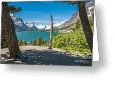 Wild Goose Island 1 Greeting Card