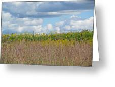 Wild Grass Two Greeting Card