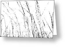 Wild Grasses Abstract Greeting Card by Natalie Kinnear