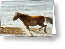 Wild Horse Running Through Water Greeting Card