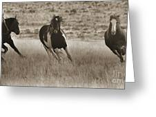 Wild Horses-sepia-signed-#7288 Greeting Card