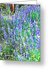 Wild In Blue Greeting Card