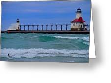 Wild In Saint Joe's Greeting Card by John Absher