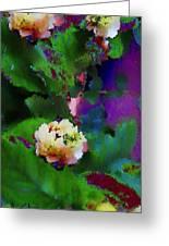 Wild Jasmine Greeting Card