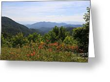 Wild Lilies With A Mountain View Greeting Card