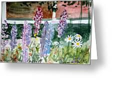 Wild Lupine In Barton Vermont Greeting Card