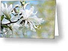 Wild Magnolia Blooms Greeting Card