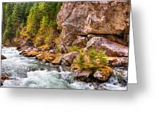 Wild Mountain River Greeting Card