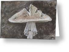 Wild Mushroom 2 Greeting Card