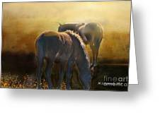 Wild Mustangs In The Mist Greeting Card