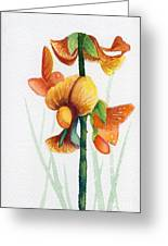 Wild Orchid Greeting Card