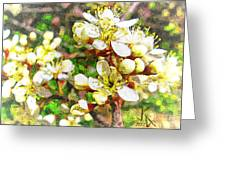 Wild Plum Flower Greeting Card