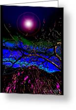 Wild Plum In New World Dawn Greeting Card