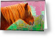 Wild Pony Abstract Greeting Card