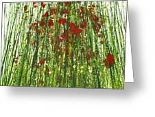 Wild Poppies And Grasses No2 Greeting Card