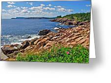 Wild Roses At Lakies Head In Cape Breton Highlands Np-ns Greeting Card