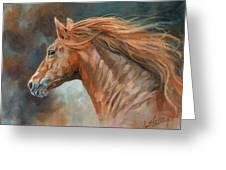 Wild Stallion Greeting Card