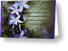 Wild Star Flowers And Innocence  Greeting Card