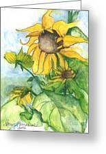 Wild Sunflowers Greeting Card by Sherry Harradence