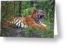 Wild Tiger Greeting Card