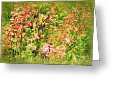 Wild Unfettered Beauty Greeting Card