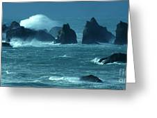 Wild Waters 2 Greeting Card