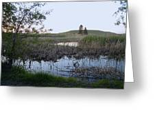 Wild Wetland Greeting Card
