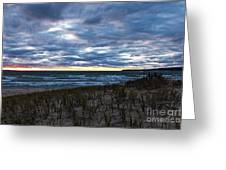 Wilderness Park Michigan Greeting Card