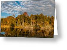 Wilderness Pond 2 Greeting Card