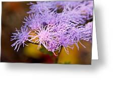 Wildflower-1 Greeting Card