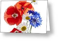 Wildflower Arrangement Greeting Card by Elena Elisseeva