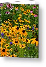 Wildflower Gold Greeting Card