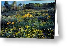 Wildflower Hillside Greeting Card