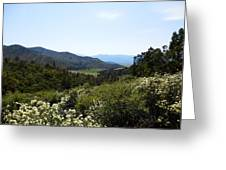 Wildflower Mountain View Greeting Card