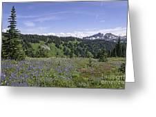 Wildflower Vista Greeting Card