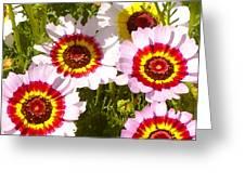 Wildflowerd Wide 1 Greeting Card