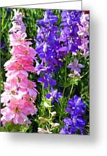Wildflowers #16 Greeting Card