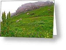 Wildflowers And Mountainous Bluffs At Point Amour In Labrador Greeting Card
