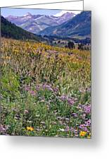 Wildflowers And Mountains  Greeting Card