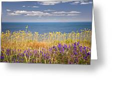 Wildflowers And Ocean Greeting Card