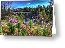 Wildflowers And Old Bridge Greeting Card