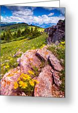 Wildflowers And Pink Rocks Greeting Card
